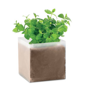 """Compost with seeds """"BASIL"""" 4"""
